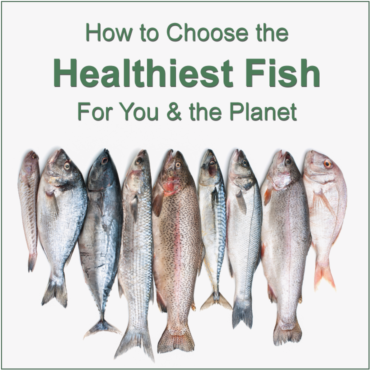 Image of How To Choose the Healthiest Fish for You and the Planet