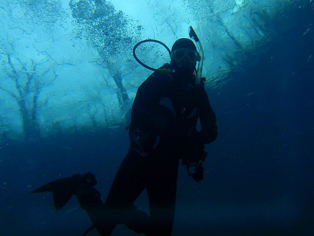 Image of scuba diver in the water